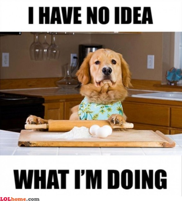 cooking-dog